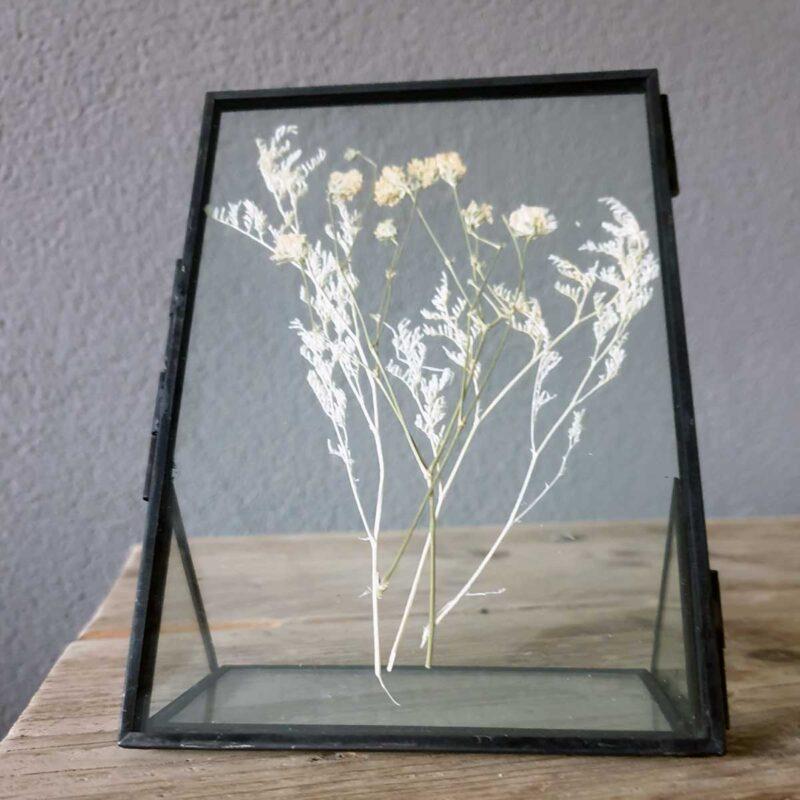 Zwart fotolijstje met droogbloemen 16 x 11 cm